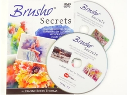 Brusho Secrets DVD by Joanne Boon Thomas