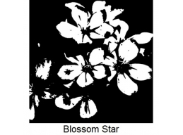 Art Stamps - Blossom Star
