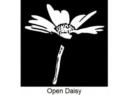 Art Stamps - Open daisy