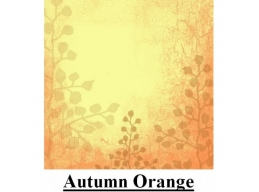 PT Autumn Orange