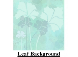 PT Leaf Background
