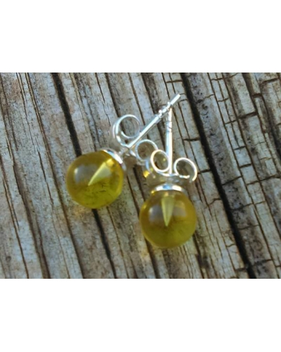 "Baltic Amber Earrings Studs Lemon Colored ""Sunrise"""
