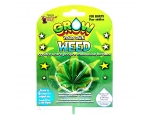 Grow Your Own Weed - Cannabis Joke
