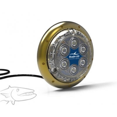 Bluefin LED Barracuda B12 SM 12v or 24v White, green or blue