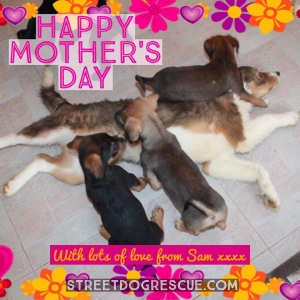 RSDR Mother's Day messages