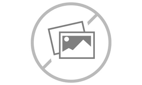 Day of the Dead Rectangular Embroidered Cushion
