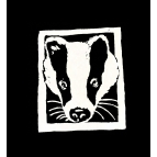 BADGER T Shirt Details
