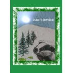SEASON'S GREETINGS BADGER CARD Details