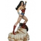 DC Comics Super Powers Wonder Woma..