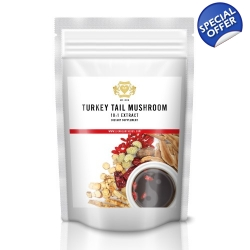 Turkey Tail Mushroom Extract 500g