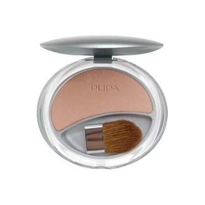 Pupa Silk Touch Blush 02