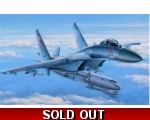 Hobby Boss Su-27 Flanker Early Version 1/48