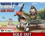 T-MODEL CURTISS P-40 WARHAWK AND PILOT CUTE PLANE