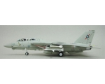 Witty Wings F-14A Tomcat VF41 ''BLACK ACES'' AJ ..