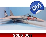 Great Wall Hobby F-15J JASDF AIR COMBAT MEET 201..