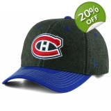 Montreal Canadiens Zephyr NHL Anchorag..