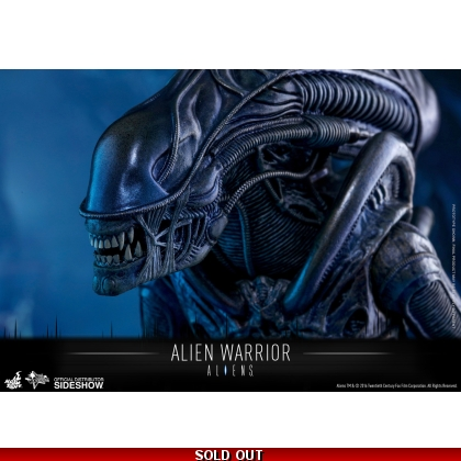 Hot Toys Aliens - 1/6th scale Alien Warrior Collectible Figure