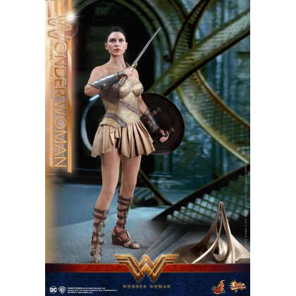 Hot Toys Wonder Woman 1/6th scale Wonder Woman Training Armor Version Collectible Figure