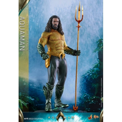 Hot Toys Aquaman 1/6th scale Aquaman Collectible Figure