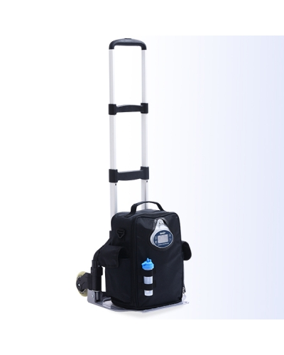 2 LPM Portable Oxygen Concentrator High Purity Continuous Flow OLV-B