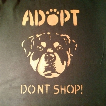 Rotty Adopt Dont Shop SPECIAL