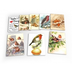 Robins Robin Red Breast Bird Vintage Set B 8 X Plastic Poster Fridge Magnets