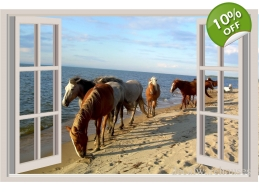 Horses Ocean Window View Repositionable Color Wa..