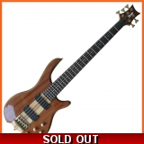 Pholea 5 String Bass Guitar