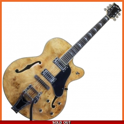 Pholea Hollow Body Jazz Guitar PJ-HBBE