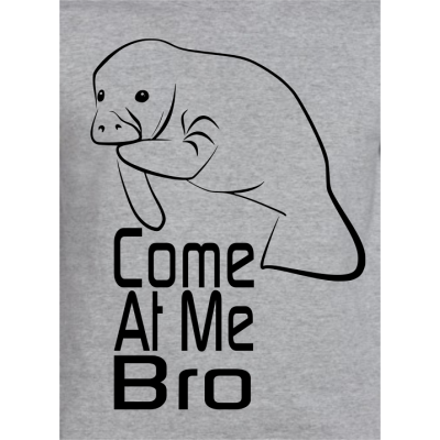 Manatee Come At Me Bro ..