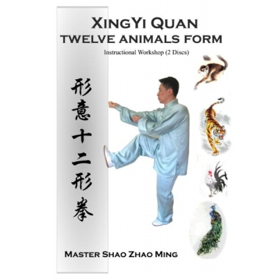 XingYi Quan Twelve..