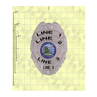 Quick Ship 2 Weeks Custom Fire Rescue Police Security Badge 7