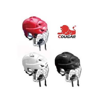Ice Hockey Helmet