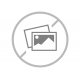NATIONALS Shorts - Womens