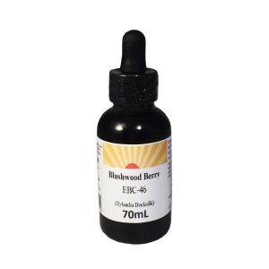 Blushwood Berry Tincture Concentr. Hylandia Dockrillii 36ml or 70ml