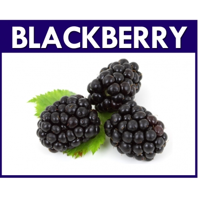 Blackberry Flavour Mix