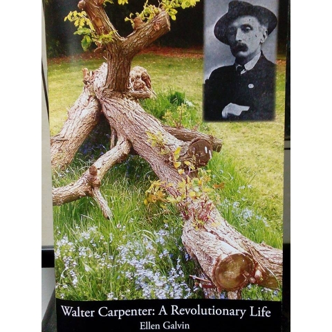 Walter Carpenter: A Revolutionary Life by Ellen Galvin