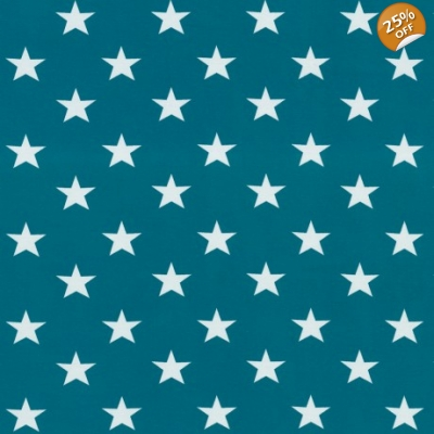 18-24m Teal Stars Dungys