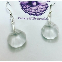 Clear Shell Crystal Earrings
