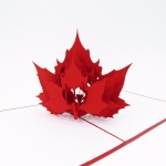 Maple Leaf Pop Up Card