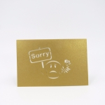 Sorry Pop Up Card