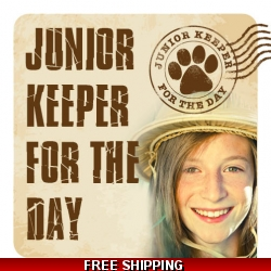 Junior Keeper