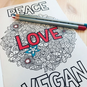 Peace Love Vegan colouring book. 14 illustrations to colour. Writing prompts. Gratitude journal. Vegan gift. Vegan gift ideas.
