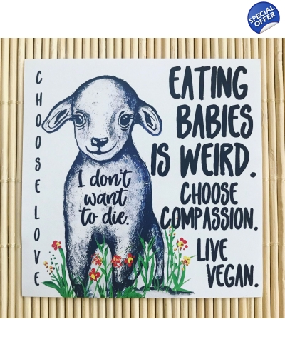 Pack of 5 I don't want to die. Eating babies is weird. Lamb. - large, vegan paper sticker. Vegan activism. Vegan activist. Vegan activism sticker. V