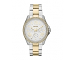 Fossil AM4543 Cecile Silver Dial Two-Tone Steel ..