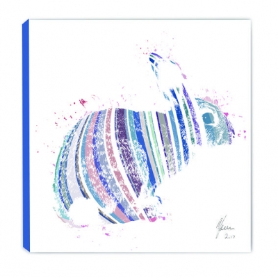 Little Ones Colourful Fine Art Rabbit Canvas Print