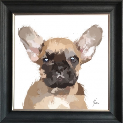 55x55cm French Bulldog Framed Print by Aimee Freeman