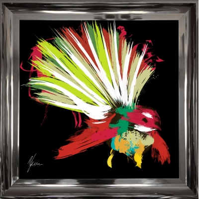 55x55cm Scruffy NewZealand Fantail Bird- Red & Black Fine Art Print