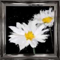 55x55cm Scruffy Black & White Daisy- Silver Foil Finished