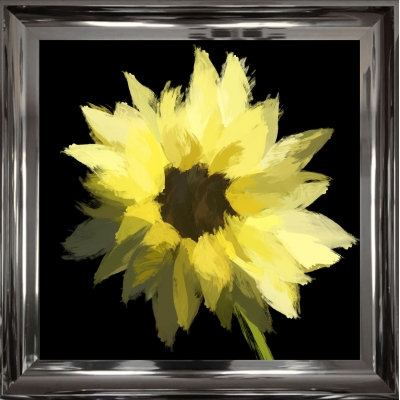 55x55cm Scruffy Sunflower- Black Background- Silver Foil F..